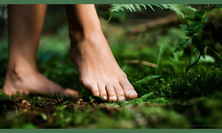 Ökologischen Reisefußabdruck berechnen und kompensieren | CO2-Bilanz Tourismus nachhaltiger Tourismus Camping Wandern Klimaschutz