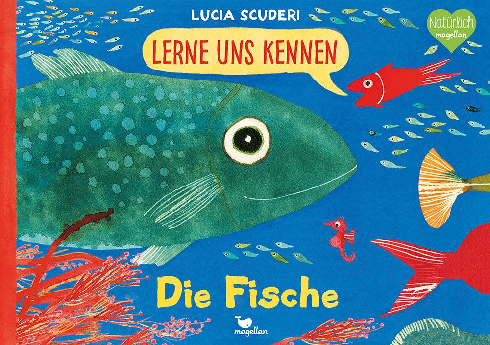 Cover Lerne uns kennen Die Fische Sachbilderbuch von Lucia Scuderi