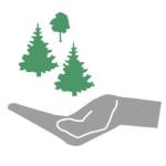 Grafik: offene Hand mit Bäumen darüber