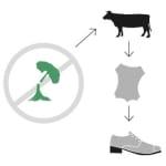 Grafik: durchgestrichener gefällter Baum, von dem ein Pfeil auf ein Rind, Leder und einen Schuh zeigt