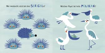 Innenansicht Doppelseite mit farbiger Illustration von Seeigeln und Pelikanen