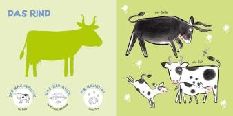 Innenansicht Doppelseite mit farbiger Illustration von Kühen