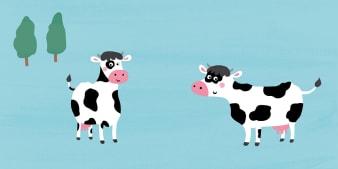 Innenansicht Doppelseite mit farbiger Illustration von Kuh