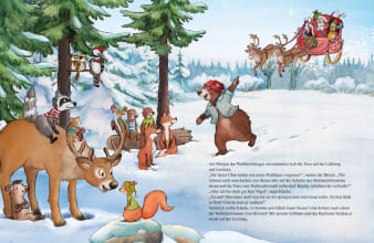 Innenansicht Doppelseite mit farbiger Illustration von Waldtieren im Schnee