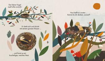 Innenansicht Doppelseite mit farbiger Illustration von Vogelnest mit Vögeln