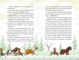 Innenansicht Doppelseite mit farbiger Illustration von Ponys mit Schlitten