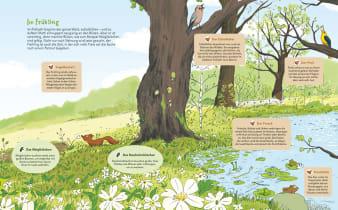 Innenansicht Doppelseite mit farbiger Illustration von Wiese mit Bäumen und Teich