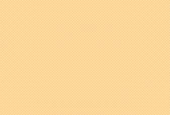 Innenansicht1 Seite mit kariertem Muster in orange