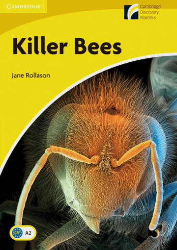 Cover Killer Bees 978-3-12-573031-1 Jane Rollason Englisch
