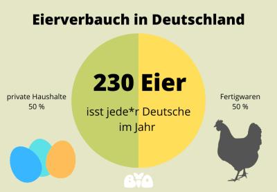 Eierverbrauch in Deutschland: 230 Eier pro Deutsche*r im Jahr, 50% stammen aus Fertigwaren