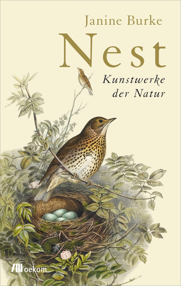 Cover: Nest