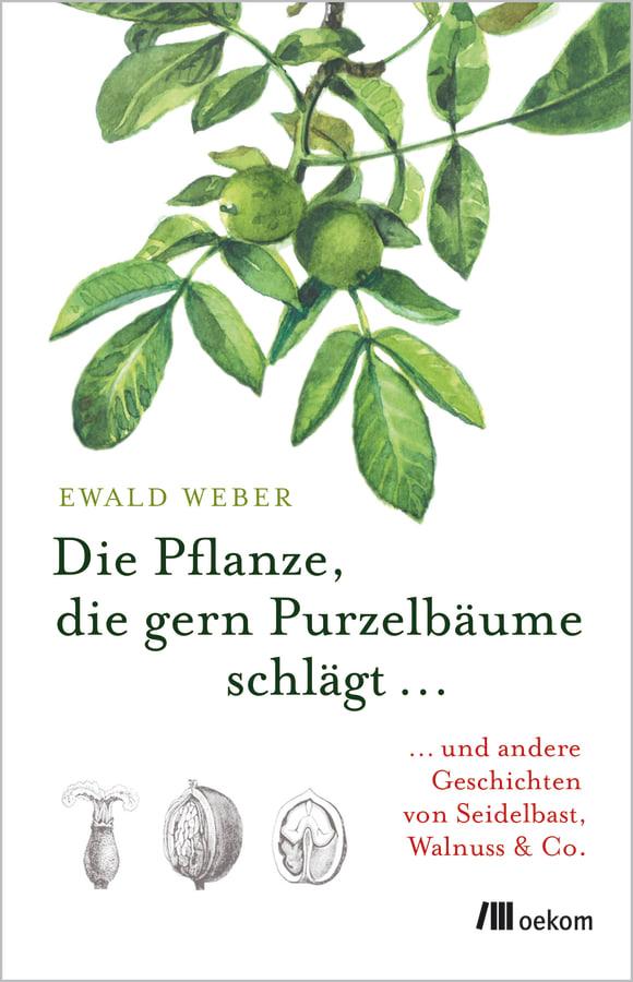 Cover: Die Pflanze, die gern Purzelbäume schlägt …