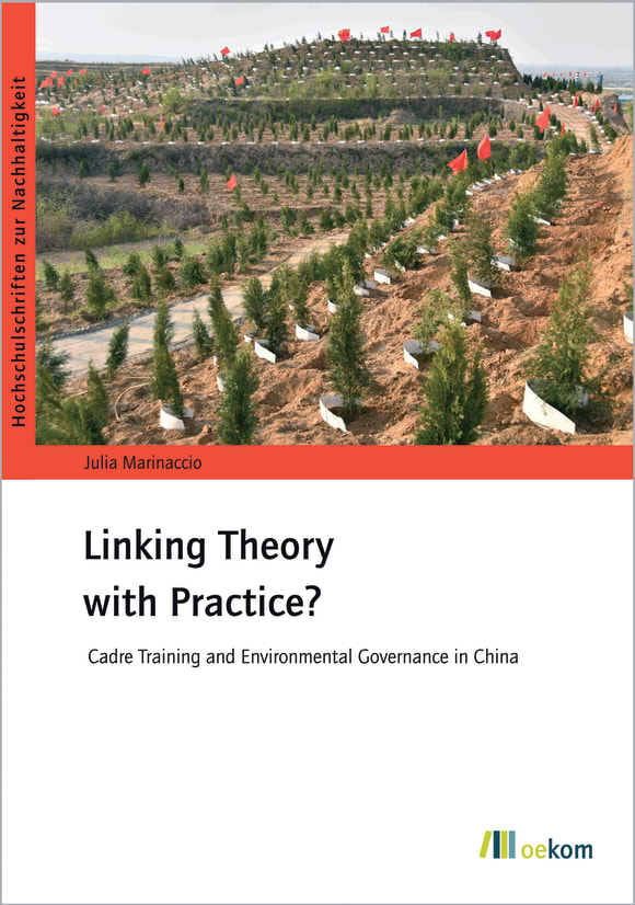 Cover: Linking Theory with Practice?