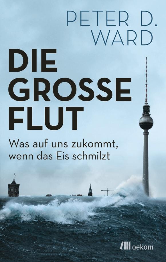 Cover: Die große Flut
