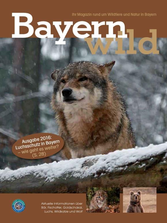 Cover: Bayern wild