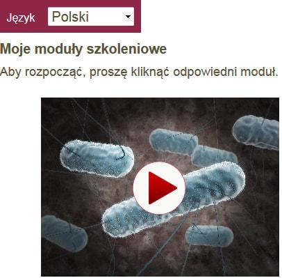 Gruppenschulung Polnisch