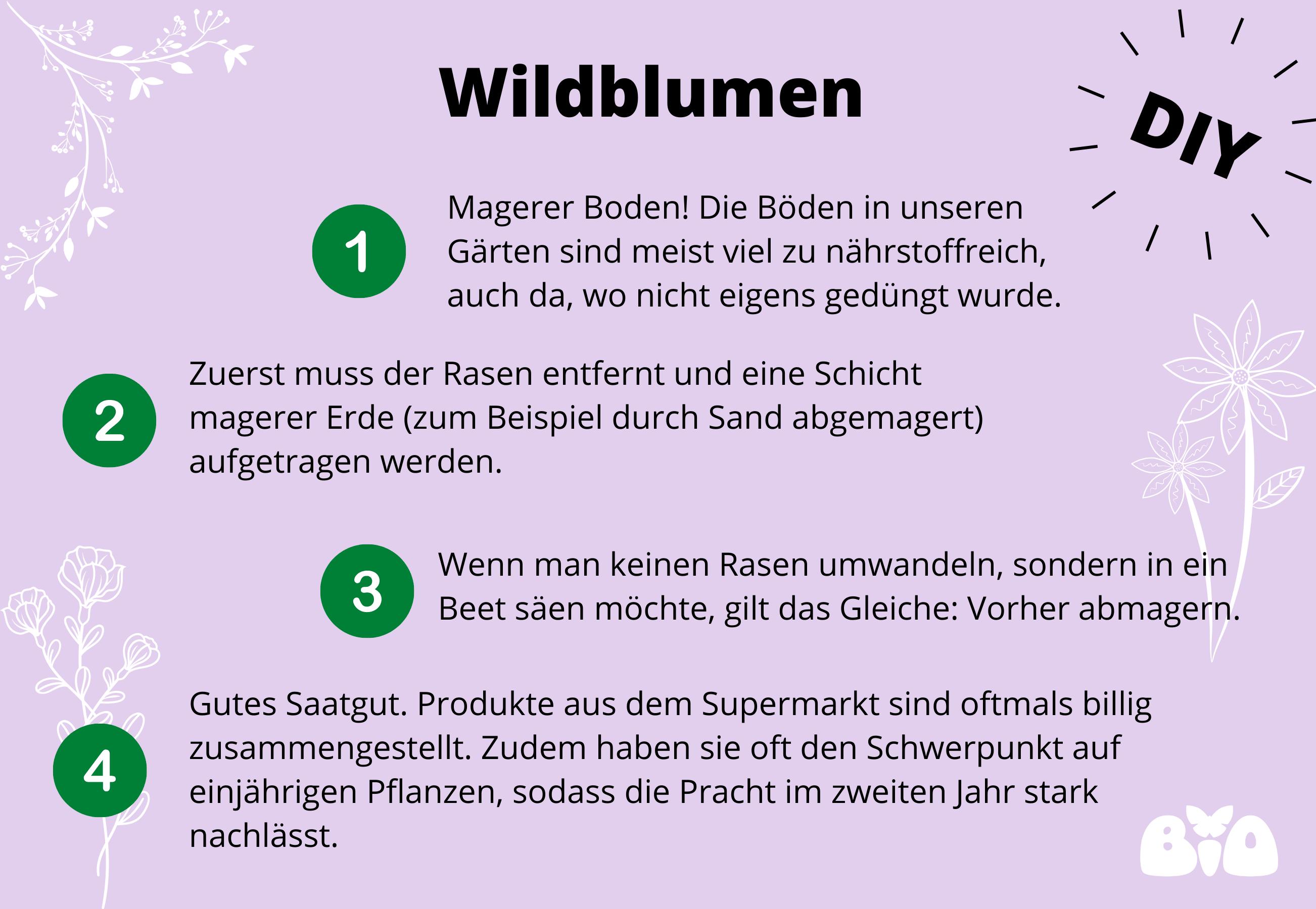Garten: Anleitung Wildblumen sähen