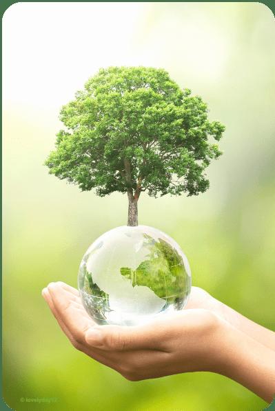 Hände halten Erdkugel mit Baum