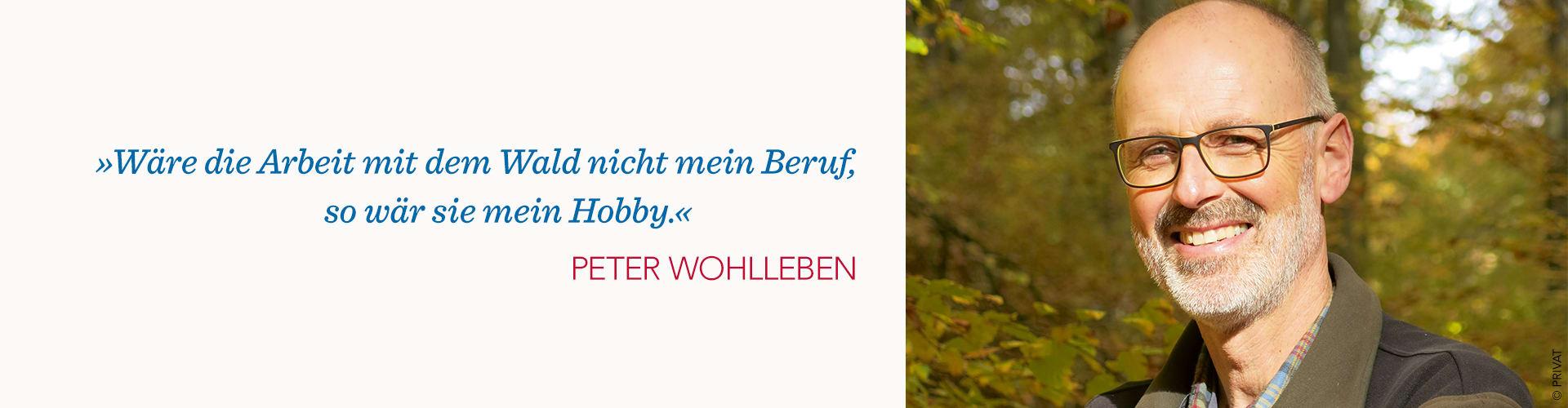 Peter Wohlleben Portrait und Zitat