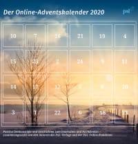 www.palverlag.de