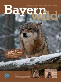 Cover für Bayern wild