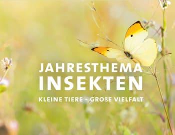 Image: ABGESAGT: Biogartenmesse 2020 – Nachhaltige Gartenkultur und Lebensart in der Orangerie Schlosspark Biebrich