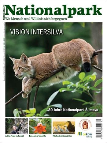 Vision Intersilva