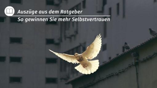 Suchergebnis: Selbstvertrauen | PAL Verlag