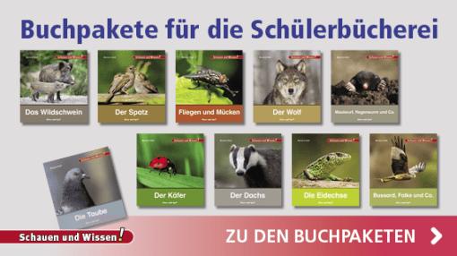 Buchpakete Schauen und Wissen | Hase und Igel Verlag