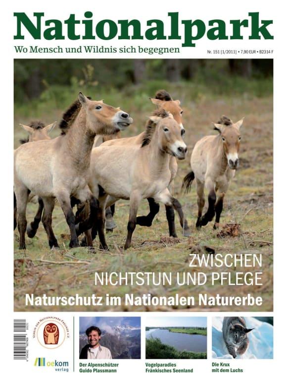 Cover: Zwischen Nichtstun und Pflege