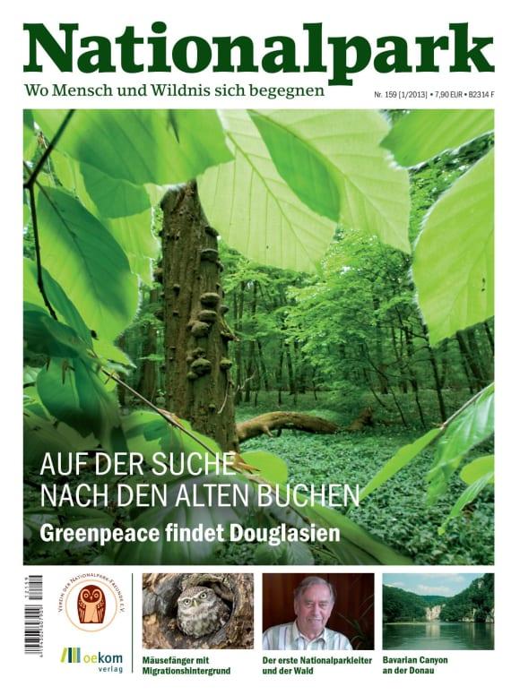 Cover: Auf der Suche nach den alten Buchen