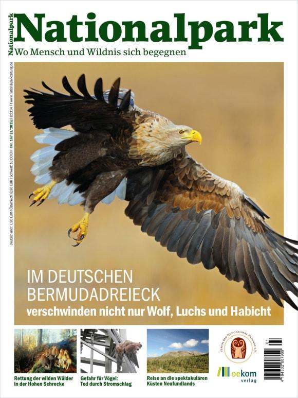 Cover: Im deutschen Bermudadreieck