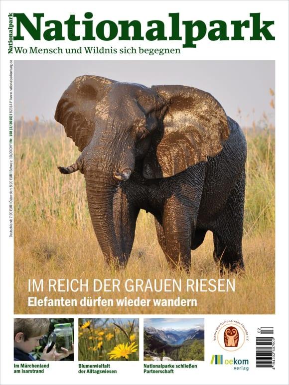Cover: Im Reich der grauen Riesen