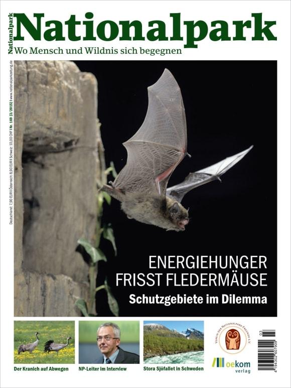 Cover: Energiehunger frisst Fledermäuse