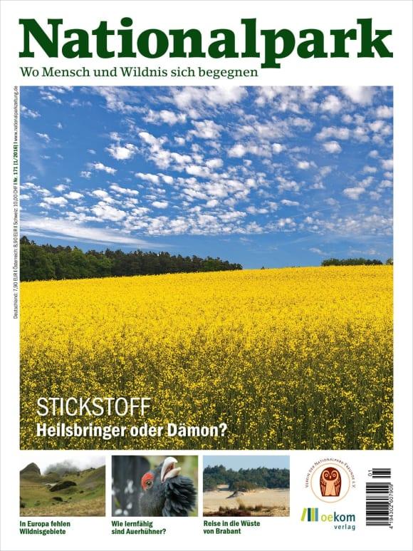 Cover: Stickstoff