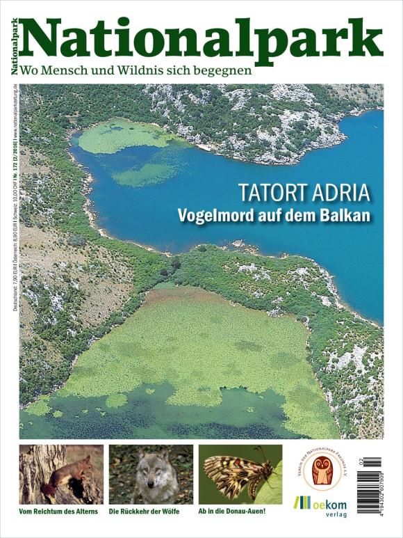 Cover: Tatort Adria
