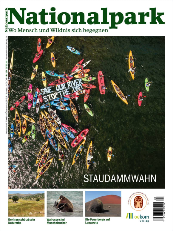 Cover: Staudammwahn