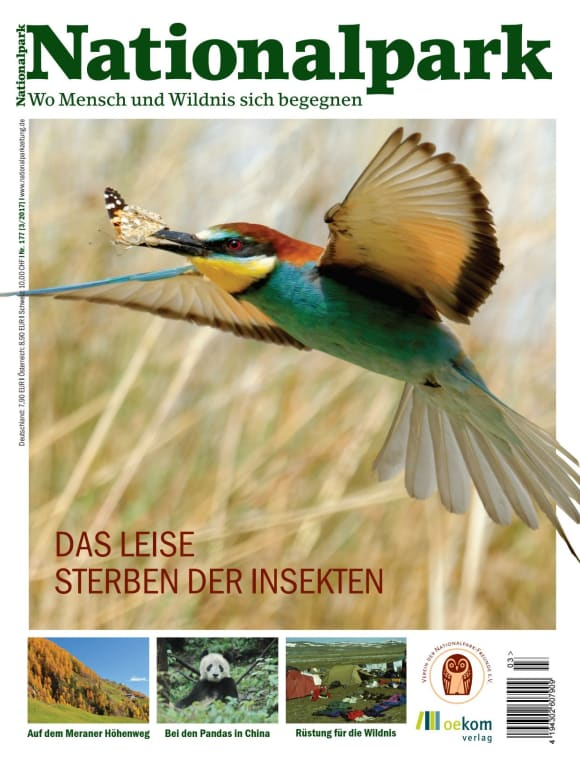 Cover: Das leise Sterben der Insekten