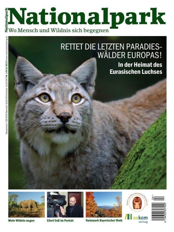 Cover: Rettet die letzten Paradieswälder Europas