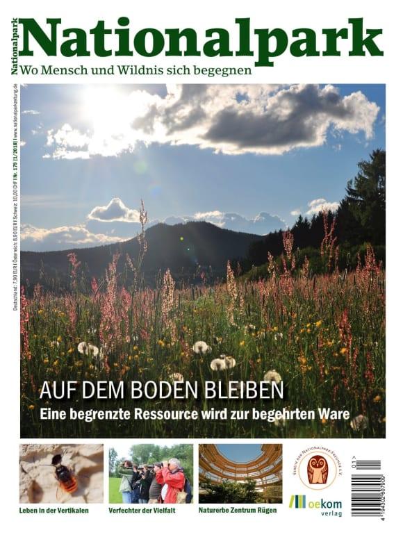 Cover: Auf dem Boden bleiben