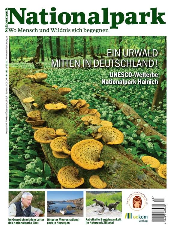 Cover: Ein Urwald mitten in Deutschland