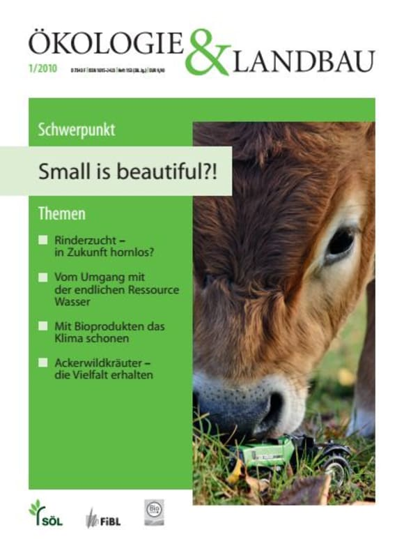 Cover: Small is beautiful?!