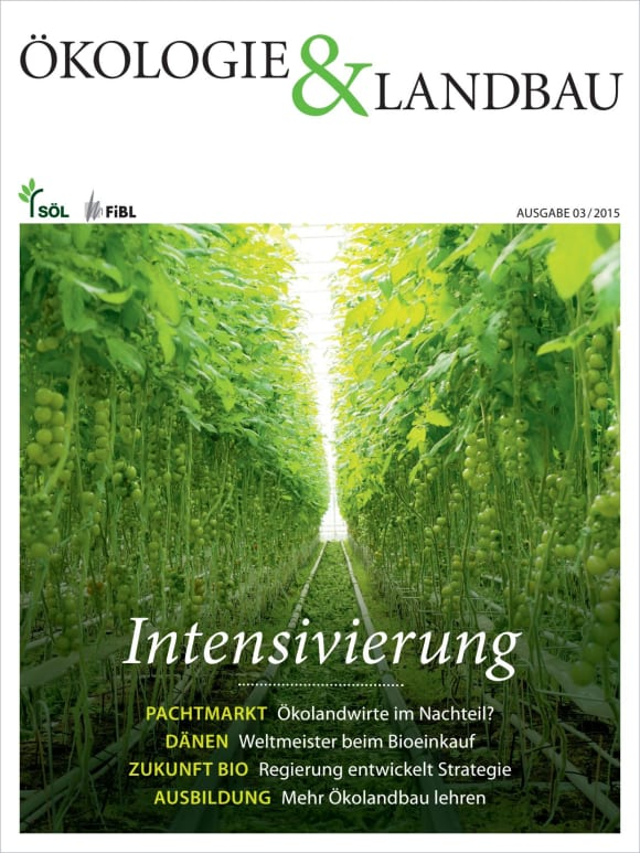Cover: Intensivierung