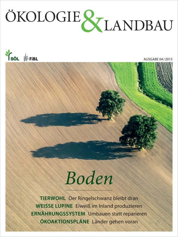 Cover: Boden
