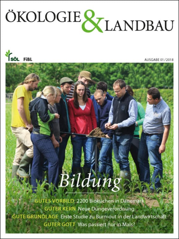 Cover: Bildung
