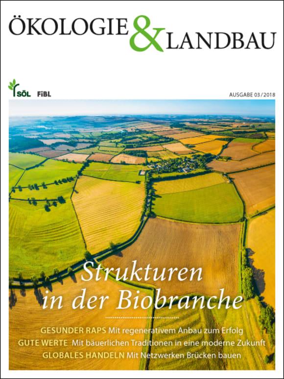 Cover: Strukturen