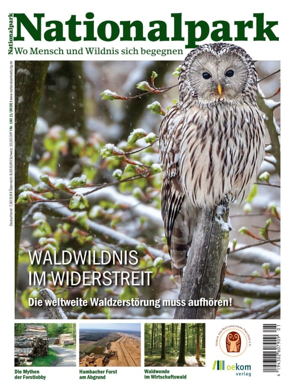 Cover: Waldwildnis im Widerstreit: