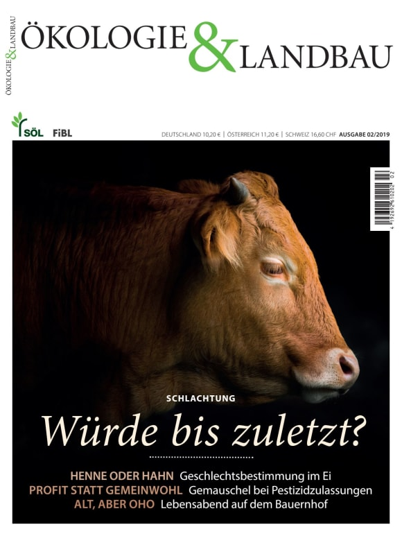 Cover: Schlachtung