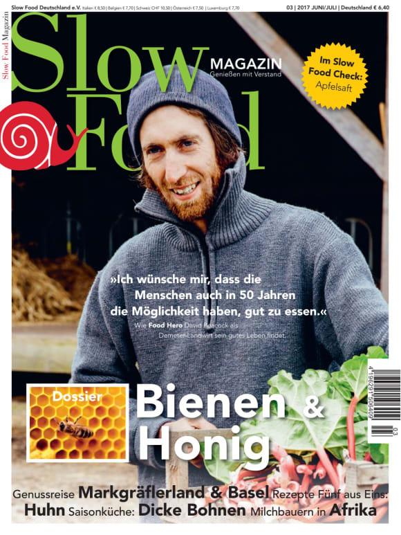 Cover: Honig & Bienen