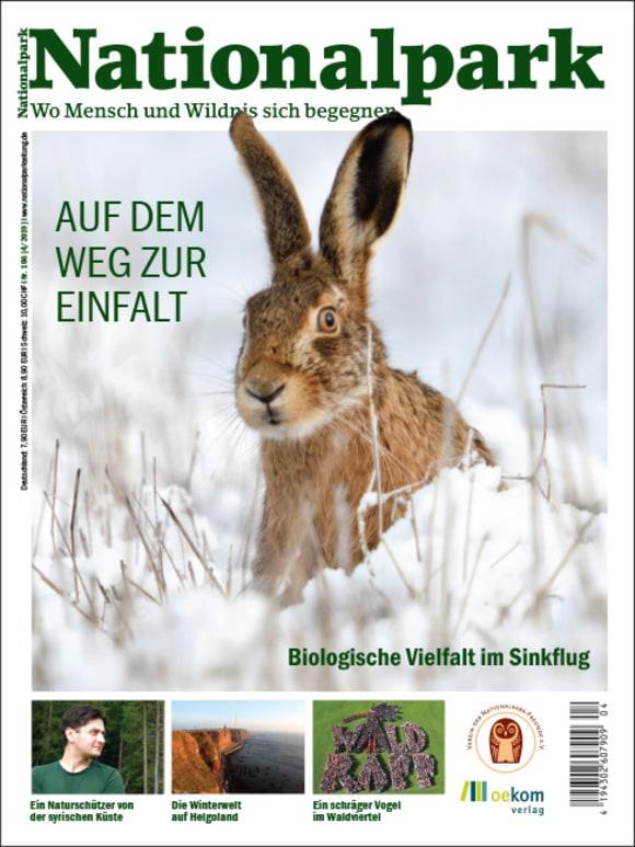 Cover: Auf dem Weg zur Einfalt